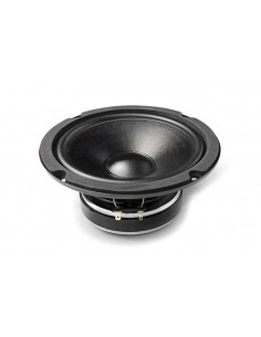 CW161N MID-WOOFER CIARE...